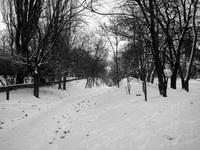 Переулок Верещагина. preview2