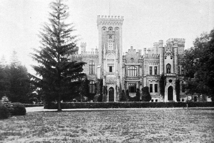 Замок в Леськово. Фотография сделана до 1917 года.179 img607--