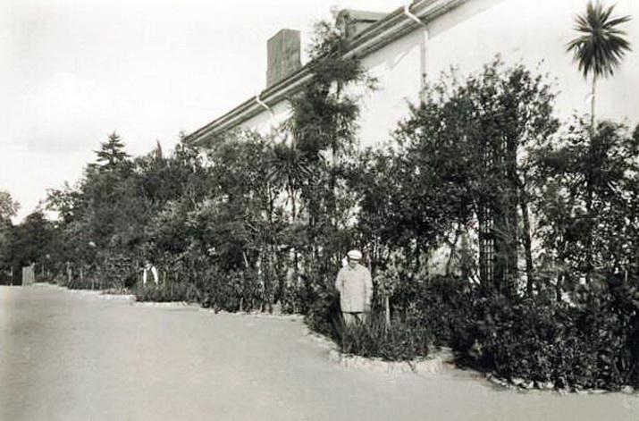 Парк Александрия. Аллея павильонов. 1914 год.1-